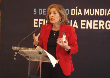 Delegada de Urbanismo y Medio Ambiente del Ayuntamiento de Madrid, Ana Botella.