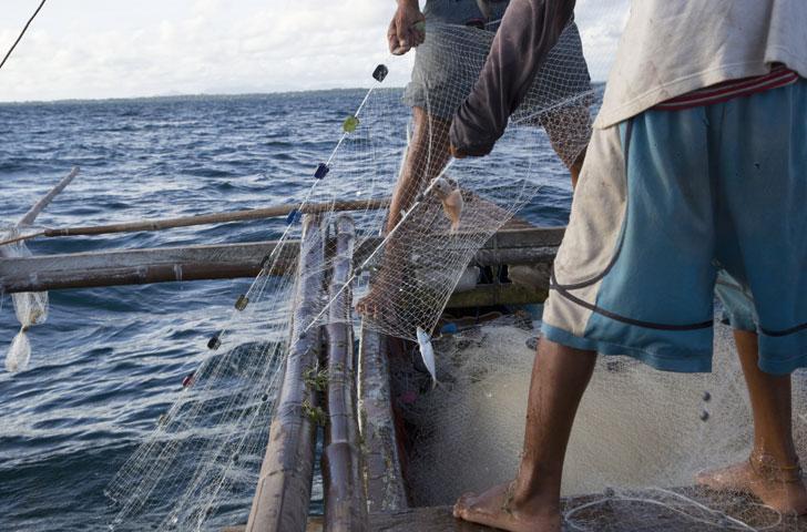 Redes de pesca desechadas.