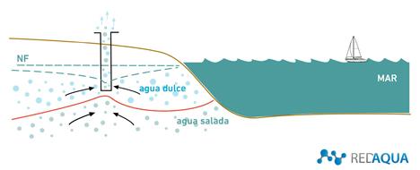 Gráfico AIDICO intrusión marina