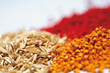 Tecnalia lidera una investigación vanguardista para desarrollar nuevos biocomposites para construcción basados en paja de trigo y papel reciclado