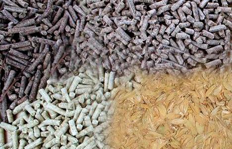 Biocombustibles sólidos con cascara de arroz y pino