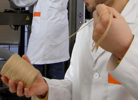 Aitex y Aimplas desarrollan un biocomposite a partir de soja y fibras naturales