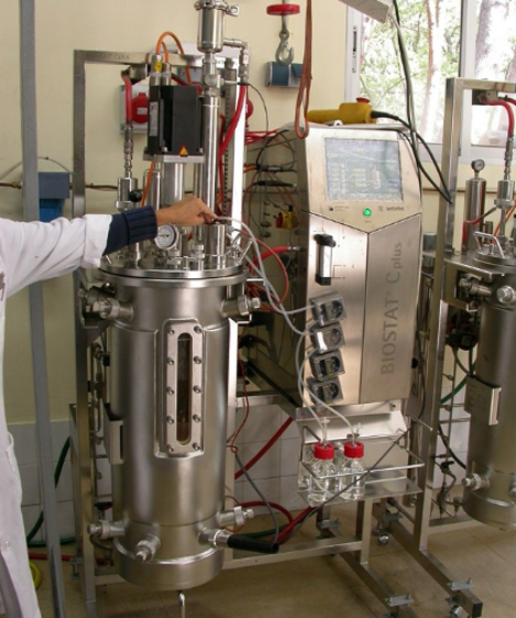 Equipo de extrusión para el pretratamiento de la biomasa lignocelulósica, paja de cebada