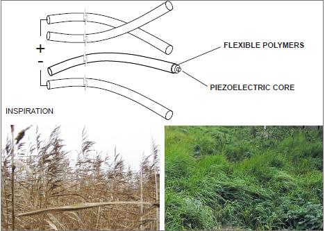 Esquema de los filamentos piezoeléctricos