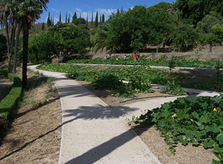 Stabex de fym italcementi en el jard n de los sentidos de m laga construible - El jardin de los sentidos ...