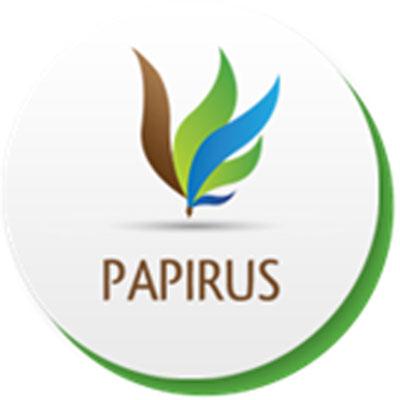 Proyecto Papirus