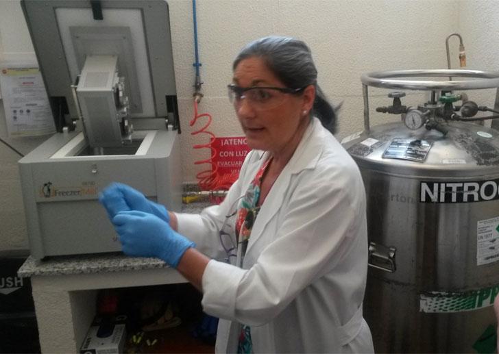 Molino criogénico del laboratorio.