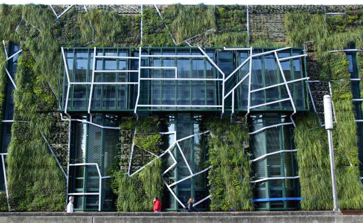 Un jard n vertical con especies aut ctonas en vitoria for Sistema de riego jardin vertical