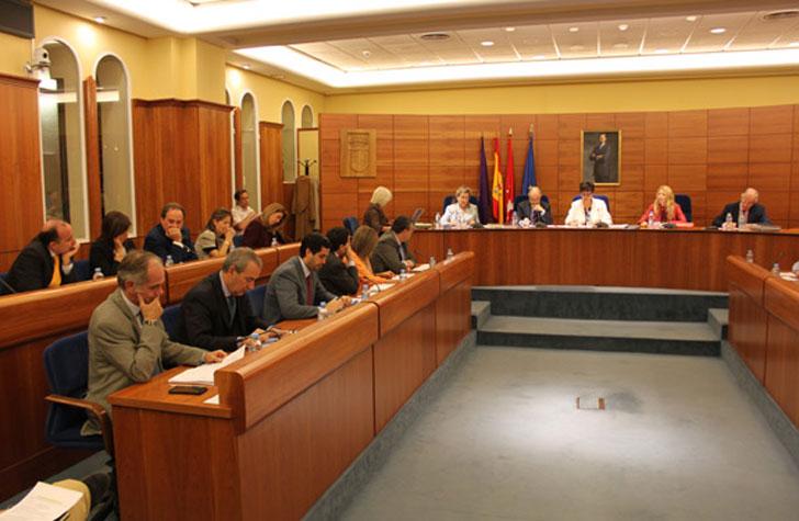 Pleno que aprueba el servicio de rehabilitación en Pozuelo.