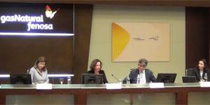 XIV Seminario de la Fundación Gas Natural Fenosa