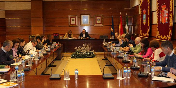 Reunión del Pleno tras la aprobación de la Estrategia.