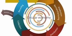 Plan de Acción de Bruselas ante el reto de la Economía Circular