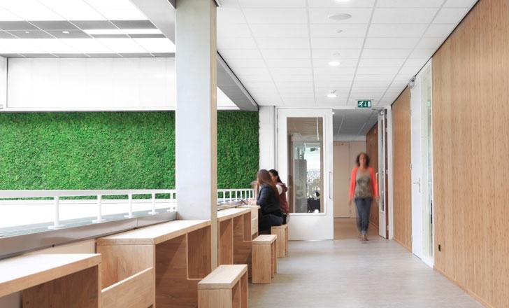 Interior del edificio construido con materiales sostenibles.
