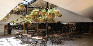 Arquitectura Biosaludable en la Rehabilitación de un Mercado en Madrid