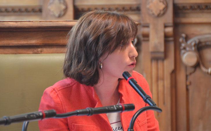 Valladolid aprueba el borrador del Plan de Acción contra Contaminación.