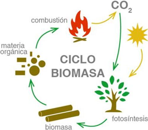 Esquema de liberación de CO2 producido por combustión de biomasa