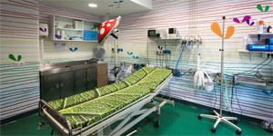 Hacia un hospital EECN. 'Biomímesis' para convertir la necesidad de cambio, en una oportunidad de mejora