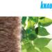 Nueva tarifa de precios de Knauf Insulation