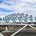 Los Edificios con Arquitectura Biomimética serán una realidad antes de cinco años