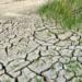 Murcia acogerá las II Mesas de Trabajo de adaptación al Cambio Climático