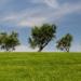 Abierto el proceso para participar en la Estrategia de Economía Verde y Circular de Extremadura