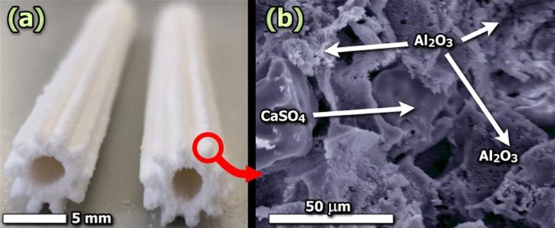 Imagen óptica y de SEM de las microestructuras fotocatalíticas impresas en 3D.