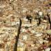 Concurso para Regeneración Urbana del entorno de la plaza de Brujas y Mercado Central de Valencia