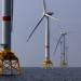 Iberdrola ratifica su compromiso de lucha contra el Cambio Climático