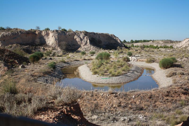 Restauración Cantera de LafargeHolcim en Yepes-Ciruelos (Toledo).