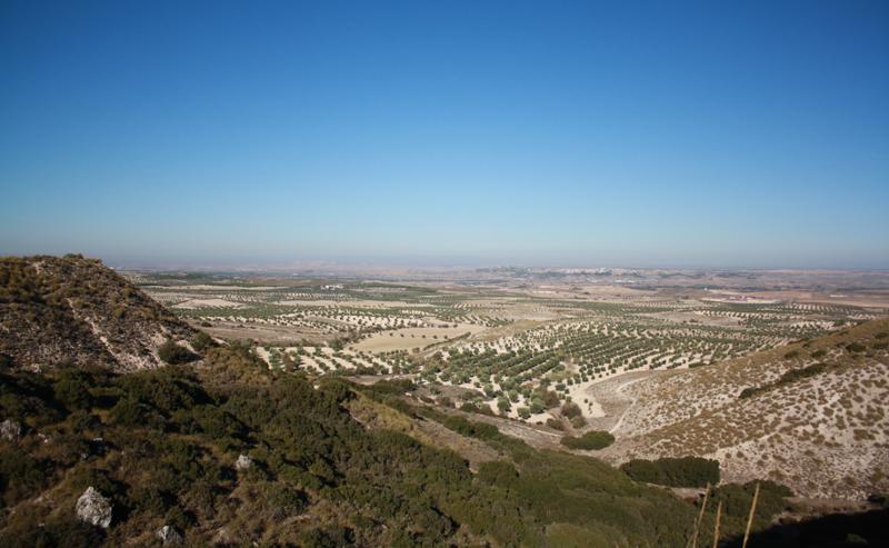 Terrenos Cantera de LafargeHolcim en Yepes-Ciruelos (Toledo).
