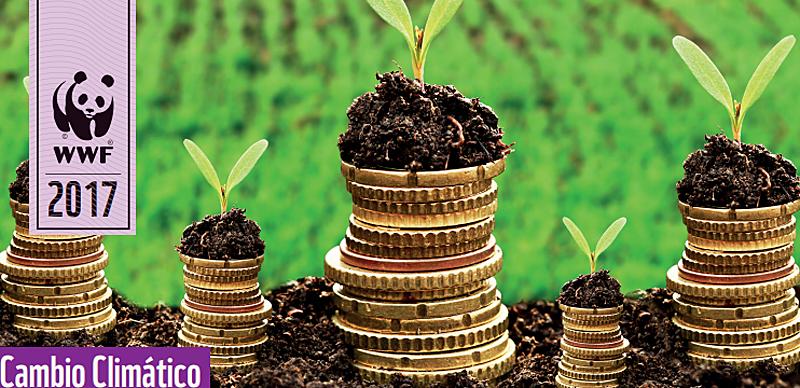 La ONG presenta el nuevo documento 'Riesgos y oportunidades en las inversiones financieras'.