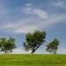 Ya se puede consultar la información pública de la Estrategia de Economía Verde y Circular Extremadura 2030