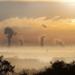 Acuerdo entre la OMS y PNUMA para combatir la contaminación Medioambiental