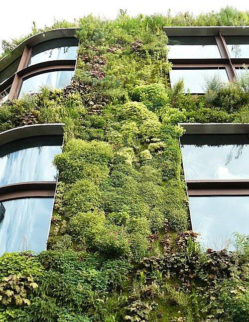 Jardín vertical del Museo de Quay Brenly (París) Autor de la fotografía: Francesca Olivieri.