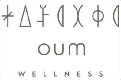 Figura 2. Logo de Wellness Hub.
