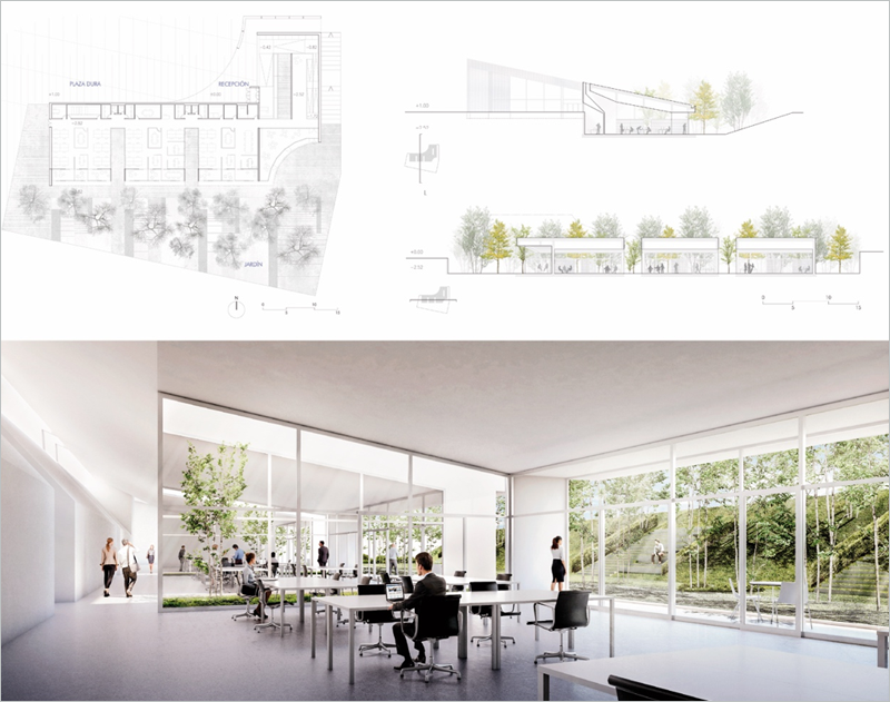 Figura 3. Planta general, sección e imagen interior del edificio.