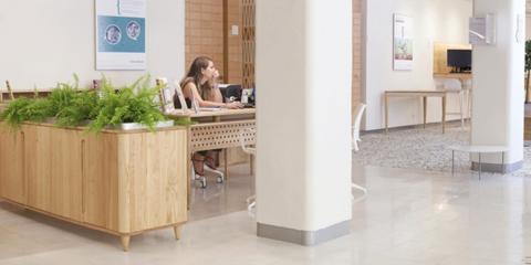 Reinventando la oficina: bioconstrucción y eficiencia energética