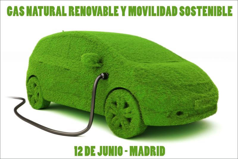 La I Jornada Sobre Gas Natural Renovable (GNR) y Movilidad Sostenible