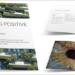 Nueva guía profesional sobre el diseño biofílico para incorporar la naturaleza al entorno construido
