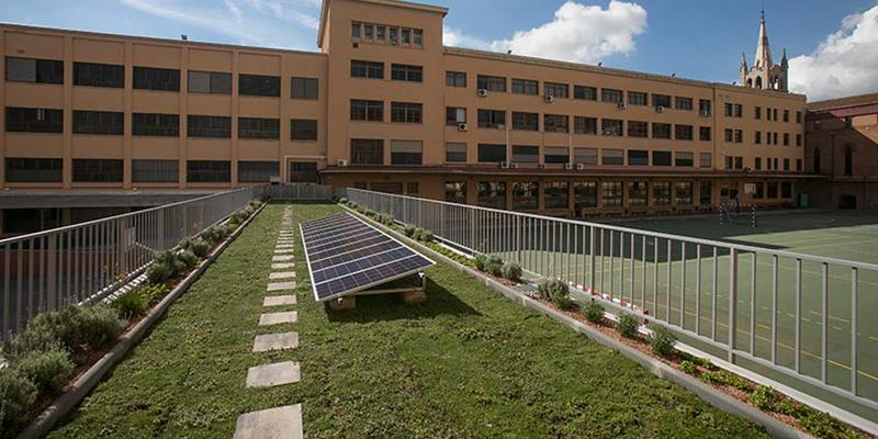cubierta verde en escuela