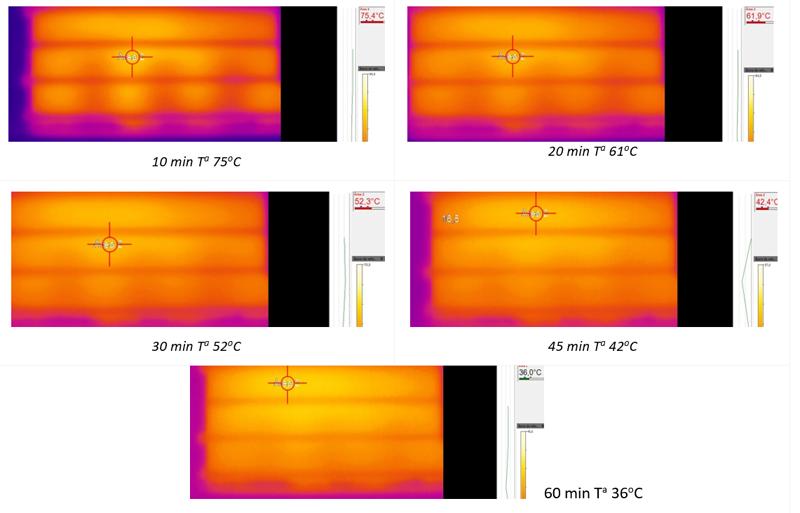 Tabla II. Secuencia térmica de enfriamiento natural hormigón.