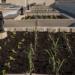 Finaliza la entrega del residencial Lutxana Barria con un sistema de huertos urbanos instalado en la cubierta