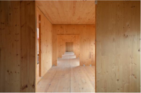 Figura 5. Vista interior viviendas con la estructura de madera terminada.