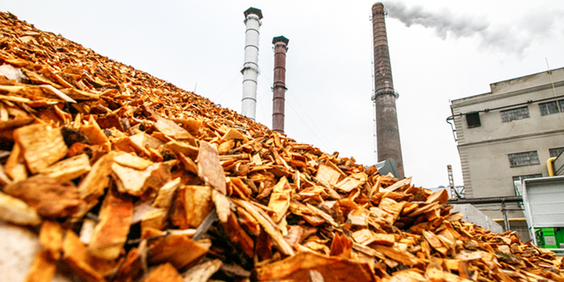 El proyecto europeo Rehap busca materiales para la construcción ecológica a partir de residuos agrícolas y forestales