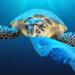 La Unión Europea aprueba la prohibición de los plásticos de un solo uso a partir de 2021