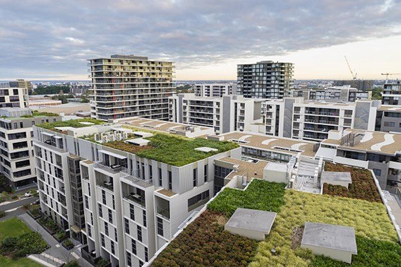 proyecto 'Terrats Verds', cubiertas verdes
