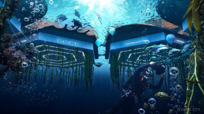 Los arrecifes activarán y regenerarán el hábitat marino, dando lugar a una pesquería sostenible. Imagen de Oceanix/BIG-Bjarke Ingels Group.