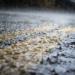 Un estudio de UPV y UPM puede contribuir a mejorar la gestión urbana del agua de lluvia
