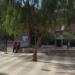 La regeneración del barrio El Rancho de Morón de la Frontera en Sevilla entra en la tercera fase