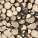 Galicia fomentará la utilización de la madera en las nuevas construcciones y la bioeconomía circular